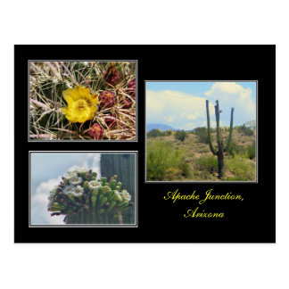 three photos from Apache Junction Arizona postcard
