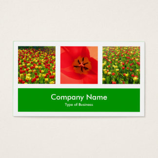 Three Photos Plus One - Grass Green Business Card