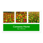 Three Photos Plus One - Grass Green Business Card Templates