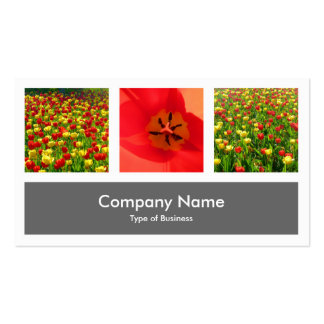 Three Photos Plus One - Gray Double-Sided Standard Business Cards (Pack Of 100)
