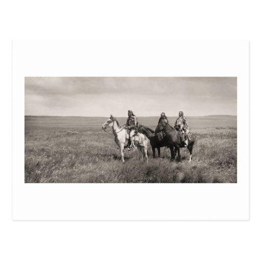 Three Piegan Blackfeet Chiefs - vintage Post Cards