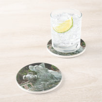 Three Piggy Fountain Sandstone Coaster