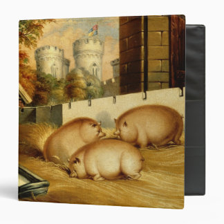 Three Pigs with Castle in the Background 3 Ring Binder