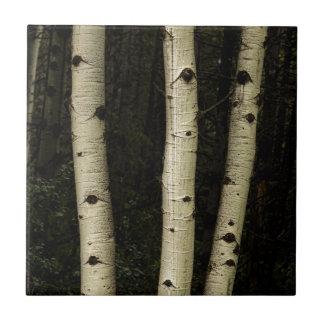 Three Pillars Of The Forest Ceramic Tile
