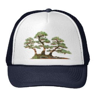 three pine bonsai trees trucker hat