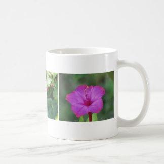 Three Pink Four O'Clocks Coffee Mug