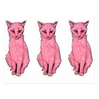 Three Pink Kitties Postcard