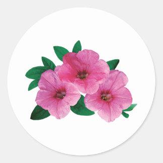 Three Pink Petunias Classic Round Sticker