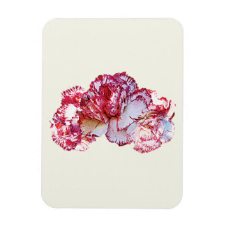 Three Pink-Tipped Carnations Magnet