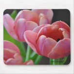 Three Pink Tulips Mousepad