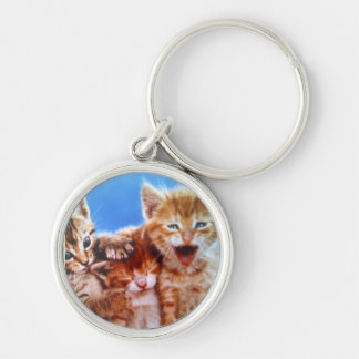 three playful kittens Silver-Colored round keychain