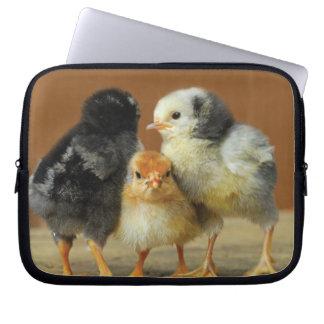 Three Polish Chicks huddling together Laptop Sleeve