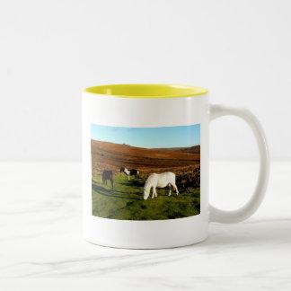 Three ponies on Dartmoor Coffee Mugs