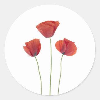 Three poppies classic round sticker