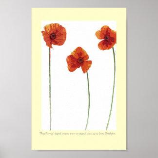 Three Poppy s Poster