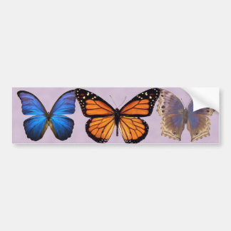 Three Pretty Butterflies Bumper Sticker