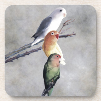 Three Pretty Lovebirds Beverage Coaster