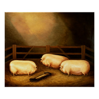 Three Prize Pigs outside a Sty Poster