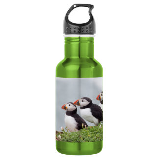 Three Puffins Stainless Steel Water Bottle