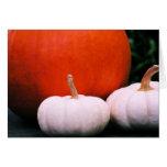 Three Pumpkins Card