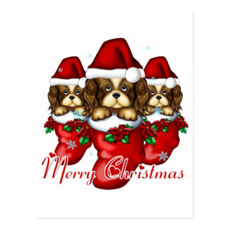 Three Puppies in Stockings Postcard