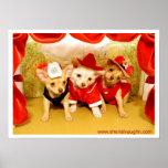 Three Puppies On Stage-300dpi-ZZ Poster