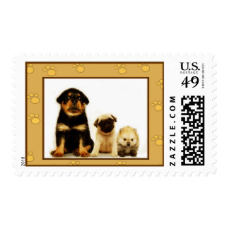 Three puppies postage stamp