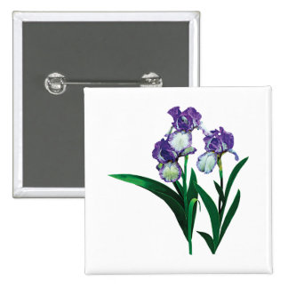 Three Purple and White Irises Button