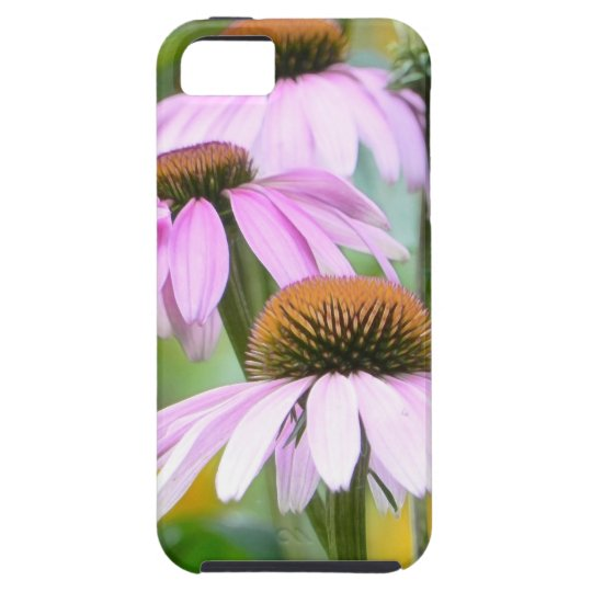 Three Purple Coneflowers iPhone SE/5/5s Case
