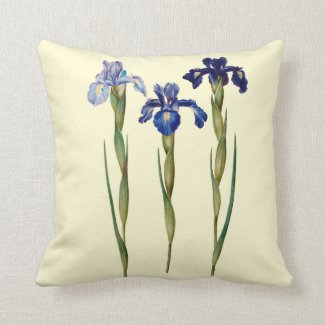 Three Purple Iris Indoor Pillow 16x16