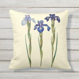 Three Purple Iris Outdoor Pillow 16x16
