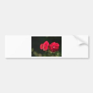 Three red flowers bumper sticker