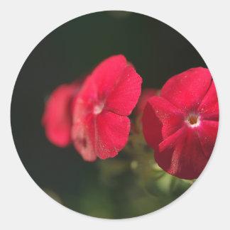 Three red flowers classic round sticker
