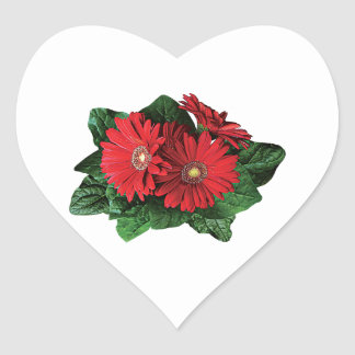 Three Red Gerbera Daisies Stickers
