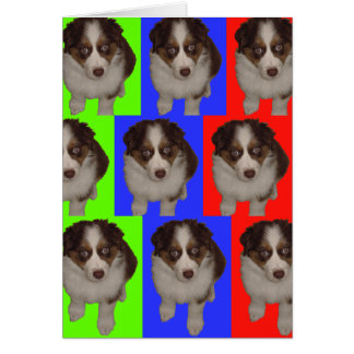 Three Red Tri Aussie Puppies Card