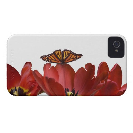 Three red tulips and a monarch butterfly against iPhone 4 case