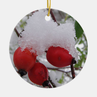 Three rosehips with snow ceramic ornament