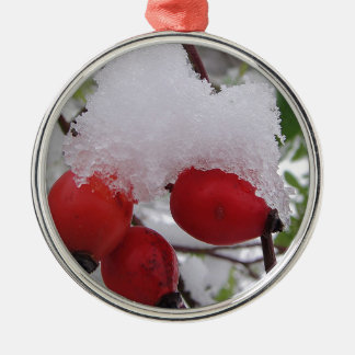 Three rosehips with snow metal ornament