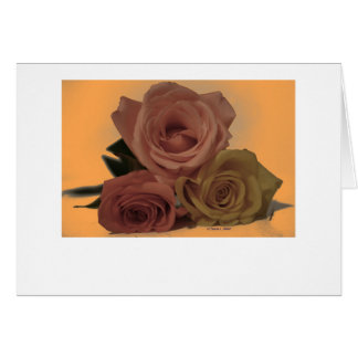Three Roses on a pale orange background Cards