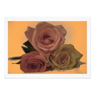 Three Roses on a pale orange background Invitation