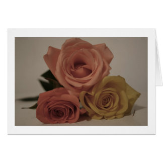 Three roses, pale colored card