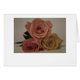 Three roses, pale colored greeting cards