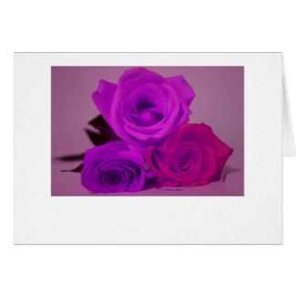 Three roses, tinted purple on a purple back greeting card