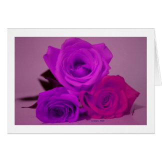 Three roses, tinted purple on a purple back greeting cards