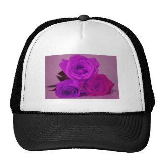 Three roses, tinted purple on a purple back mesh hat