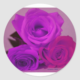 Three roses, tinted purple on a purple back stickers