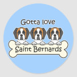 Three Saint Bernards Classic Round Sticker