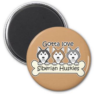 Three Siberian Huskies Refrigerator Magnets