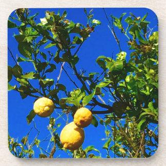 Three Sicilian Lemons Drink Coaster