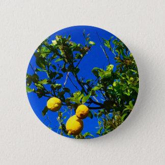 Three Sicilian Lemons Pinback Button